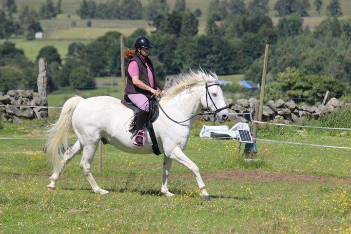 Loose rein riding1